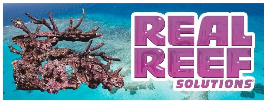 Real Reef Solution Steine